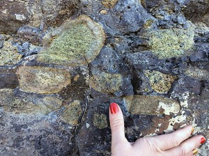 Xenoliths at Elephant Butte